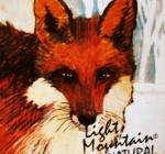 Hennovanie: Líšková červená henna od Light Mountain